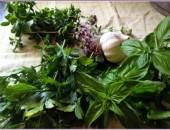 herbs-and-garlic