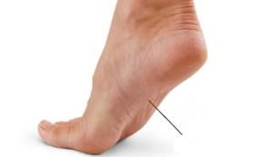 болка в краката
