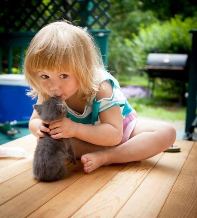 Деца и животни  (0)