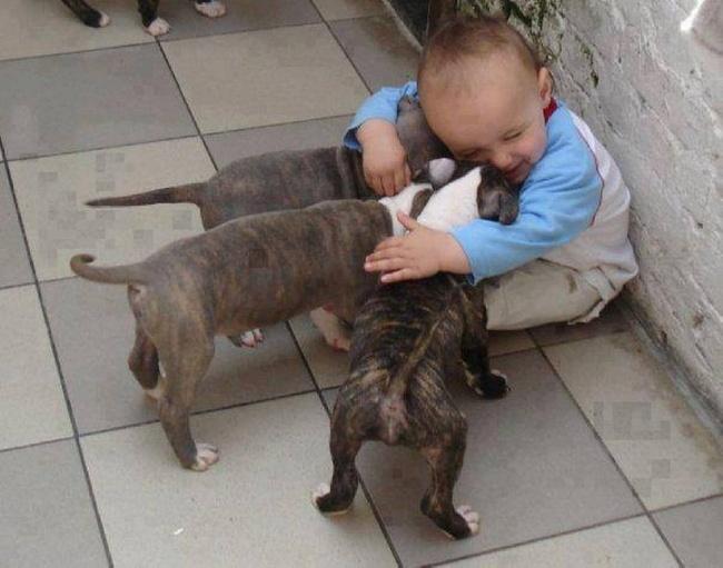 Деца и животни  (11)