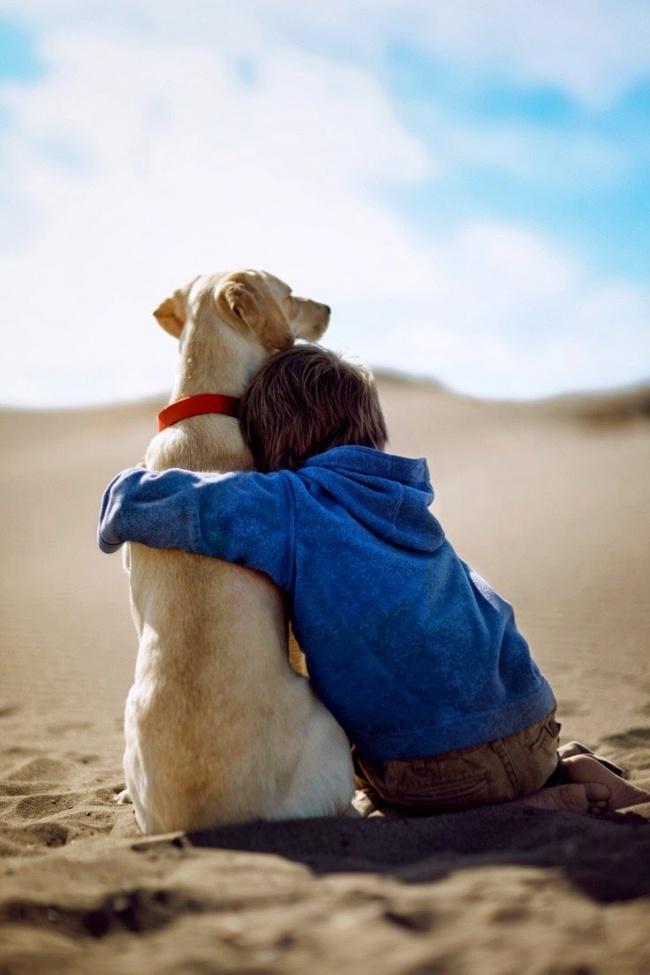 Деца и животни  (2)