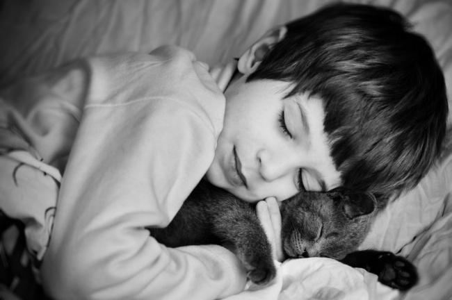 Деца и животни  (26)