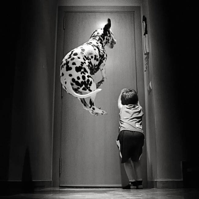 Деца и животни  (3)