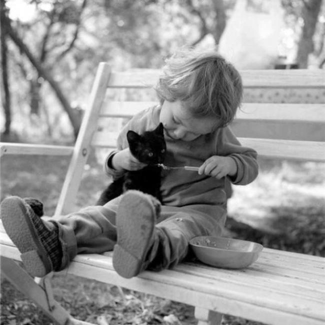 Деца и животни  (5)