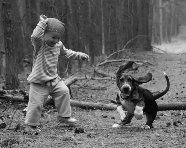 Деца и животни  (7)