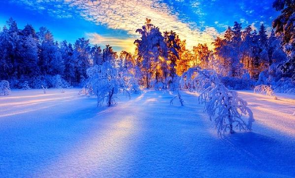 Winter+10