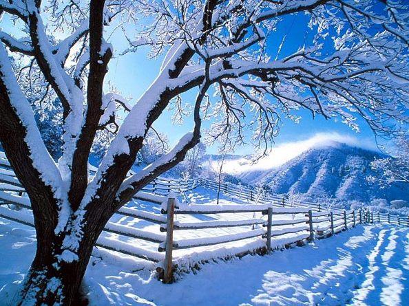 Winter+11