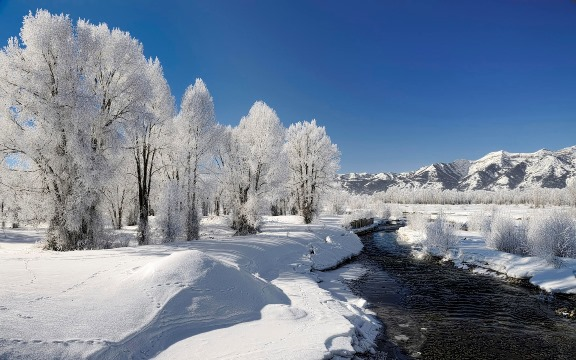 Winter+2