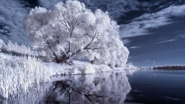 Winter+3