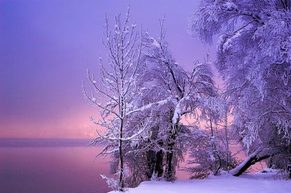 Winter+7