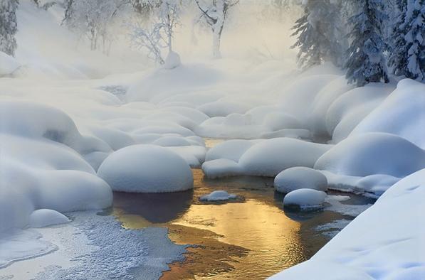 Winter+8