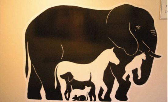 Колко животни има на картинката