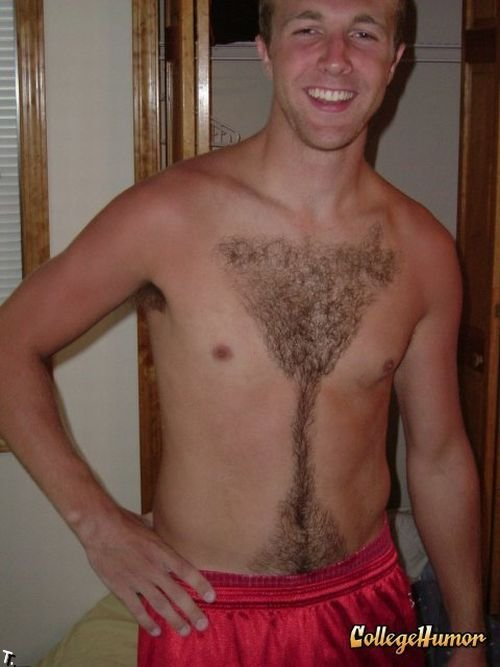 chest_haircuts_25