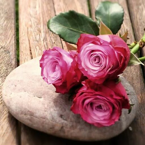 rozi r