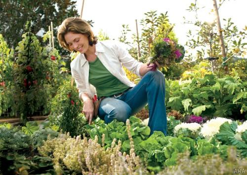 Работата в градината е велик лечител на стреса
