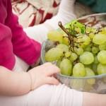 бебе плодове