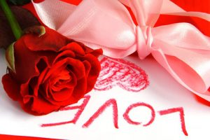 rose_love