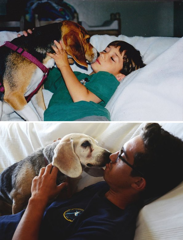 before-after-dogs-10