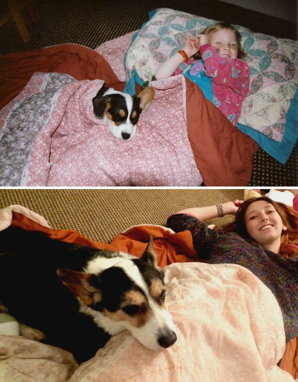 before-after-dogs-14