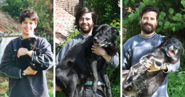 before-after-dogs-2