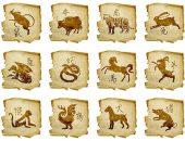 kitajski-zodiak