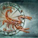 Скорпионите