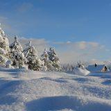 снежна буря